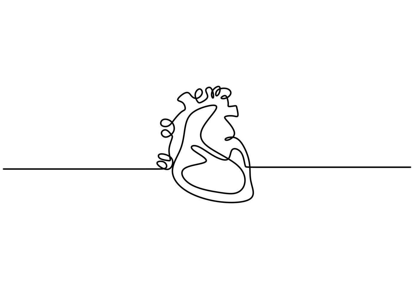 silueta de corazón humano anatómico de línea continua única. vector