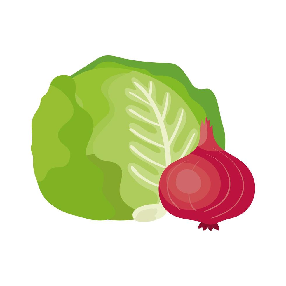 fresh lettuce with purple onion vegetables vector