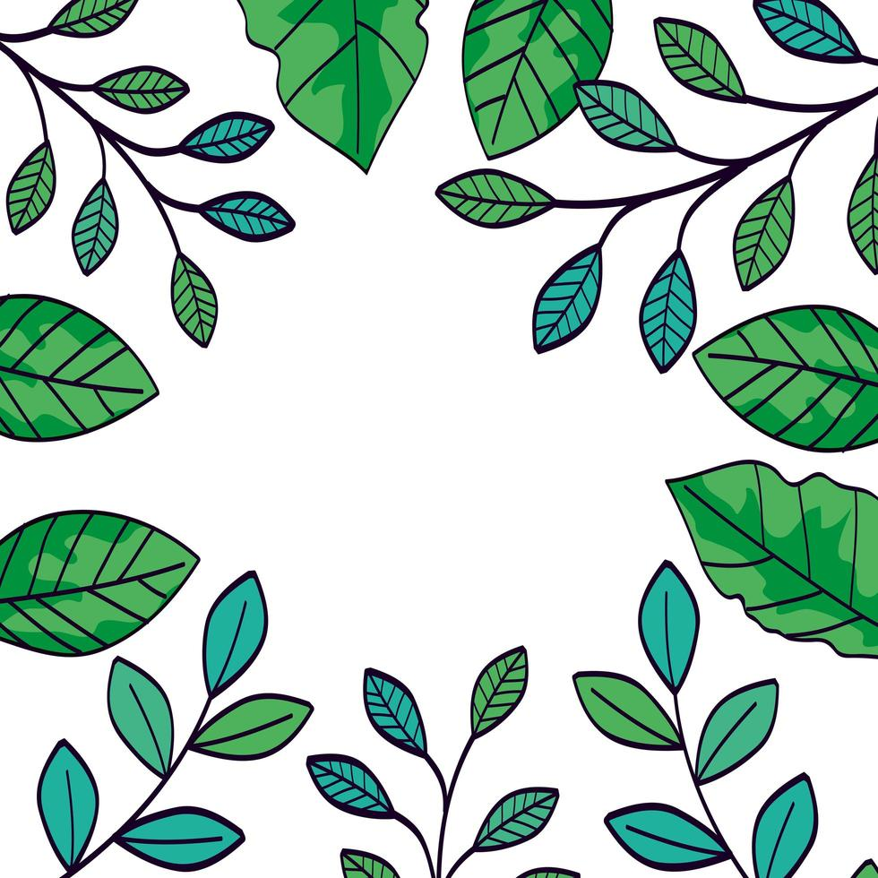 frame of branches with leafs naturals vector