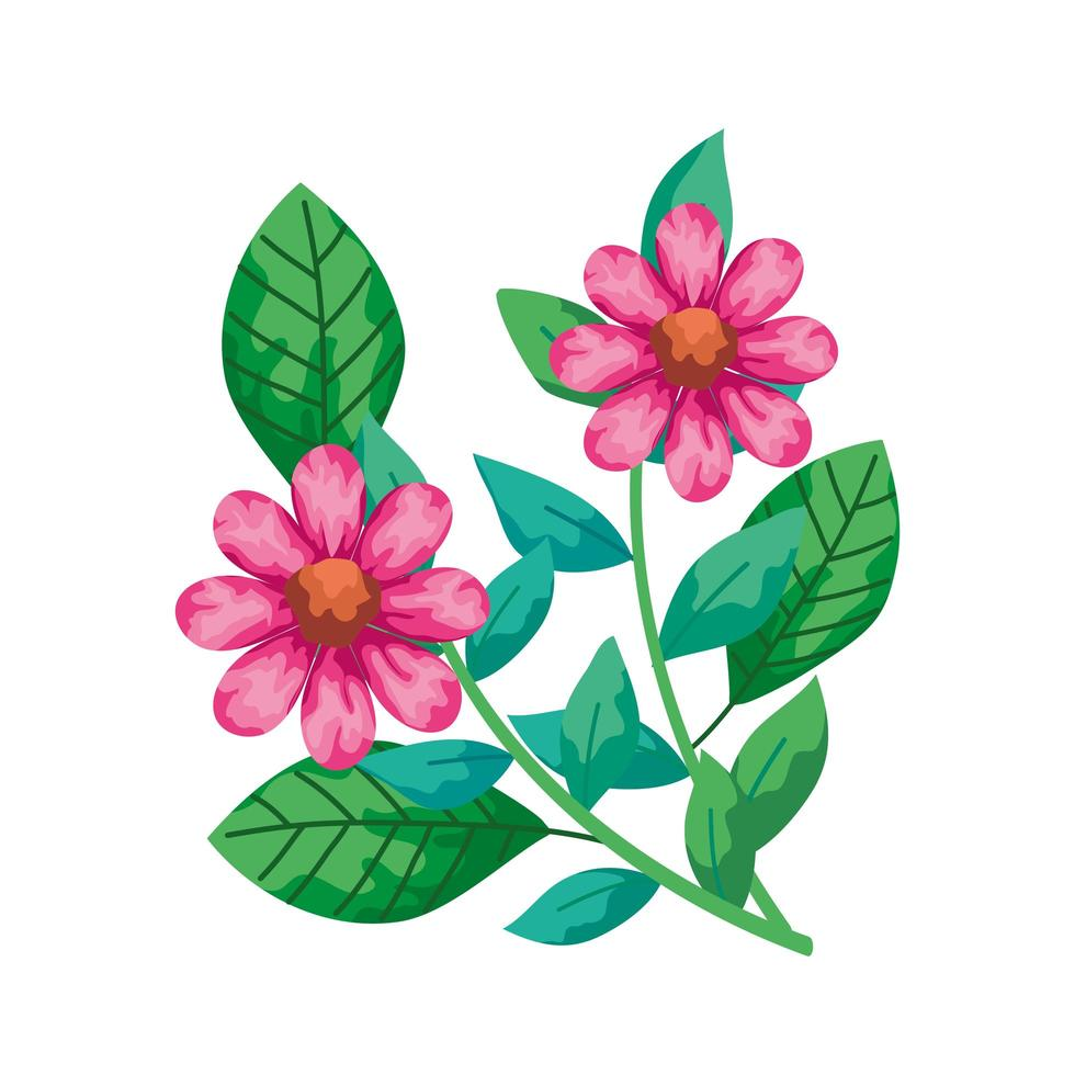 cute flowers pink with branches and leafs isolated icon vector