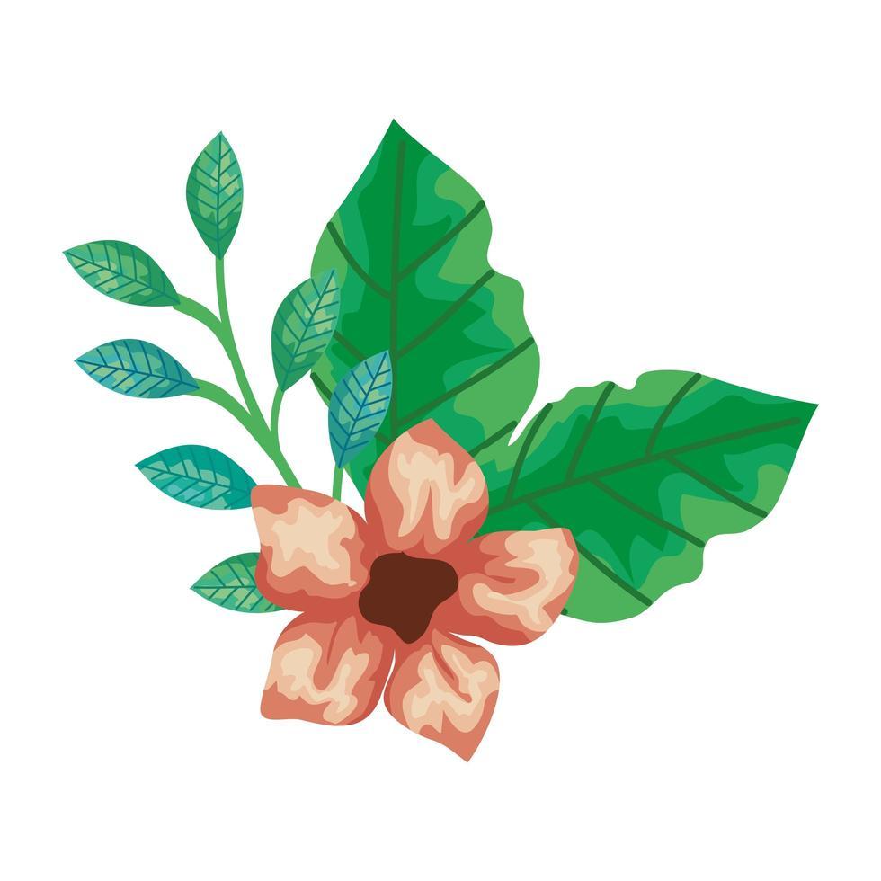 lindas flores con ramas y hojas icono aislado vector