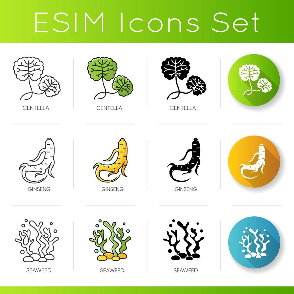 Cosmetic ingredient icons set. Centella leaves. Ginseng root. Seaweed component in skincare products. vector