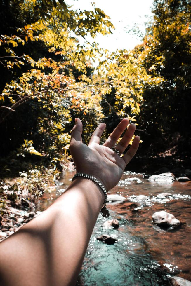 Hand in nature photo