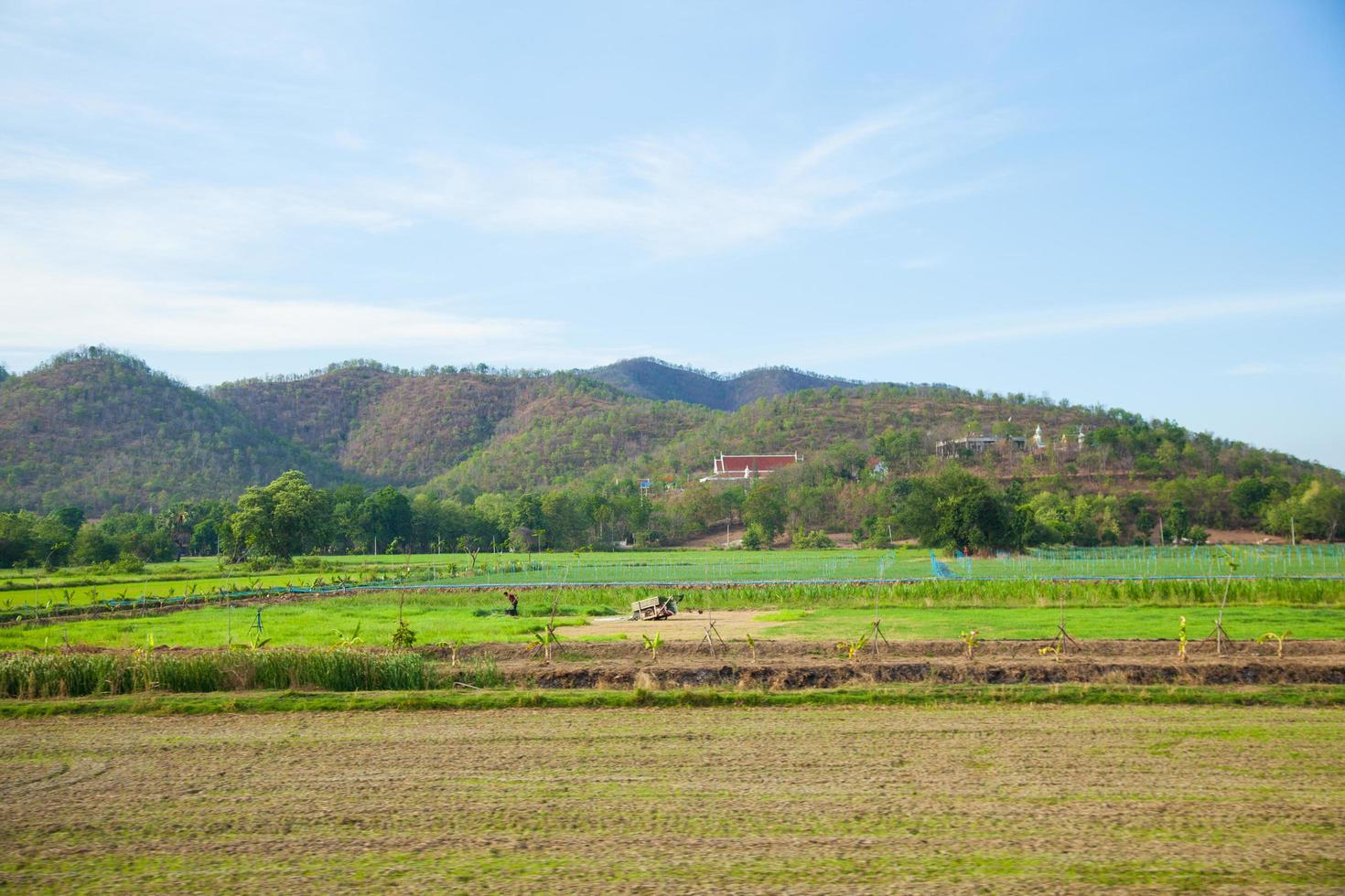 tierras de cultivo y montañas foto