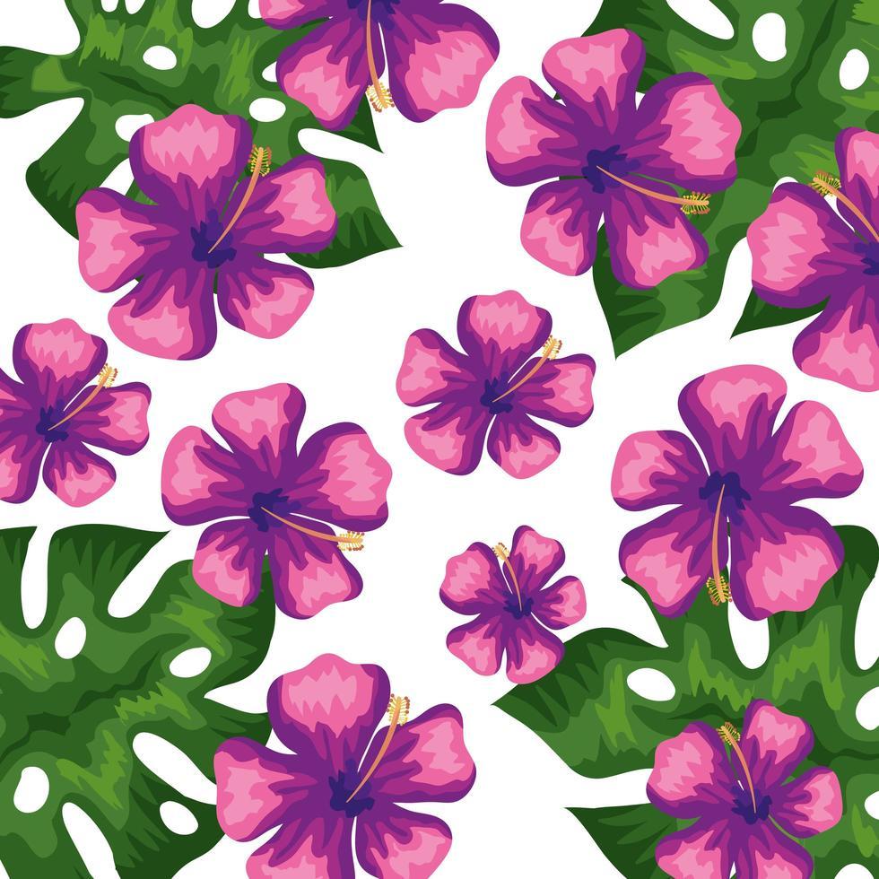 Fondo de flores de color morado con hojas tropicales. vector