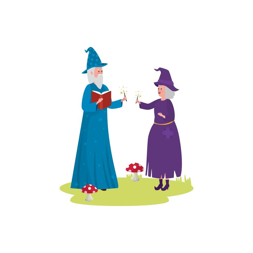 wizard with witch avatar character vector