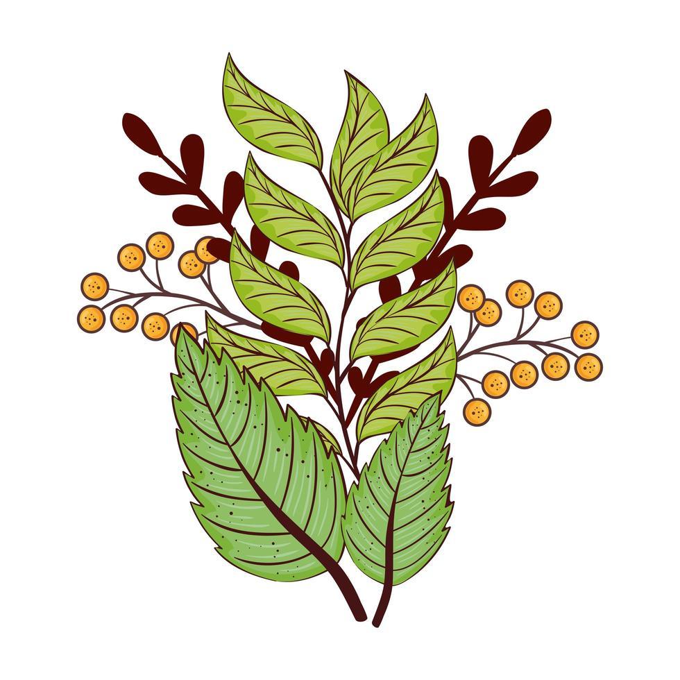 temporada de otoño hojas y ramas verdes planta naturaleza vector