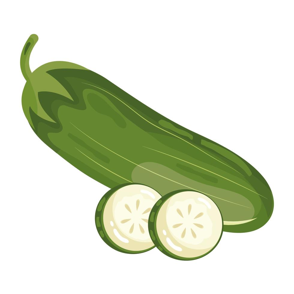 pepino fresco vegetal icono de comida sana vector