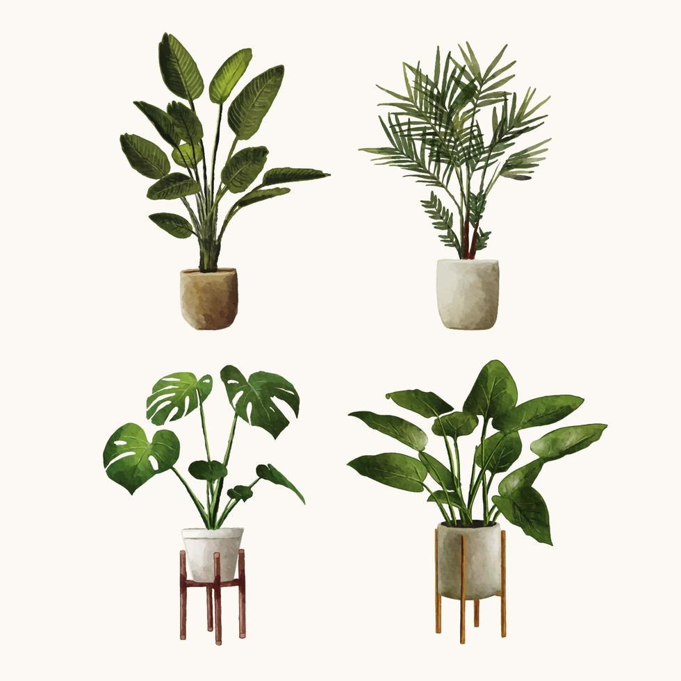 watercolor hand drawn plant illustration set vector