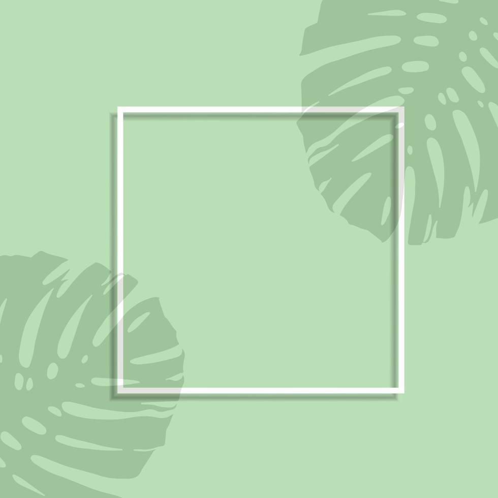display mock up with white frame and leaves shadow overlay vector