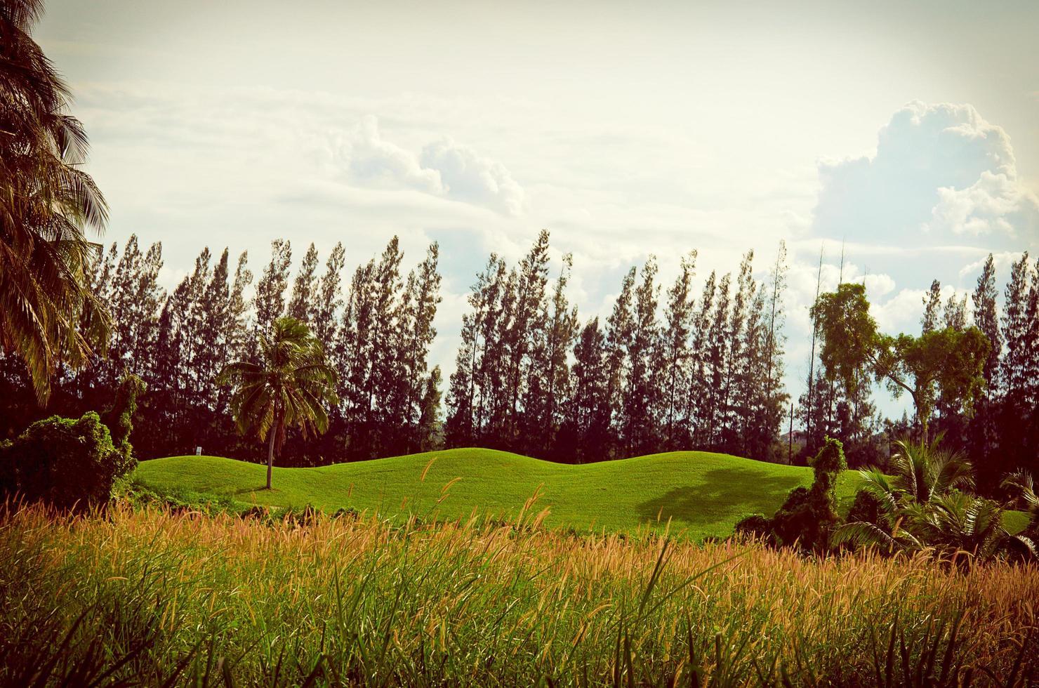 paisaje montañoso con filtro cálido foto