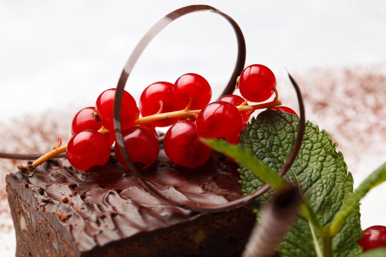 Chocolate cake with red currants photo