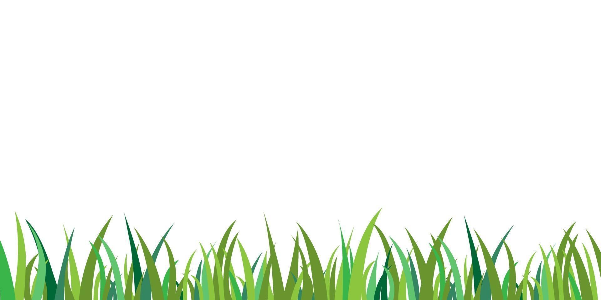vector de fondo aislado de hierba verde. decoración de marco de borde de hierba. campo de jardín plano