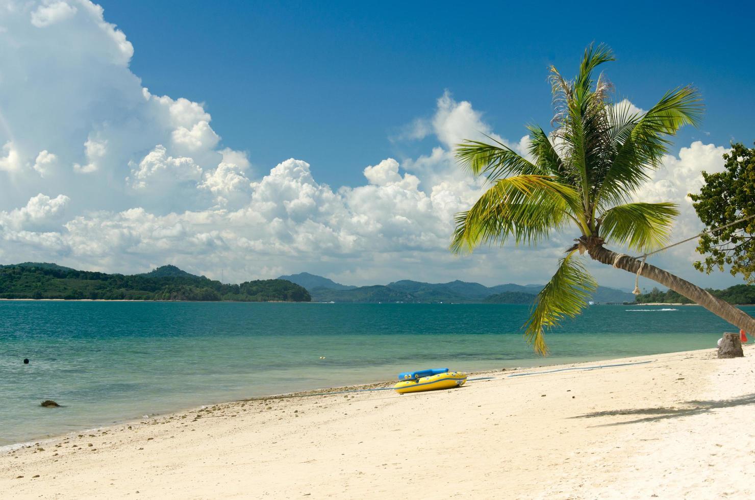 cocoteros y playa en tailandia foto