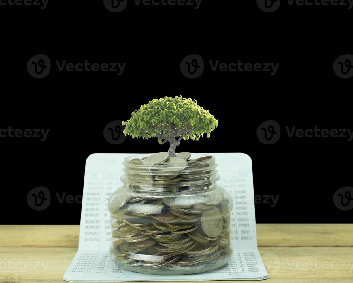 árbol que crece fuera de un tarro de monedas foto