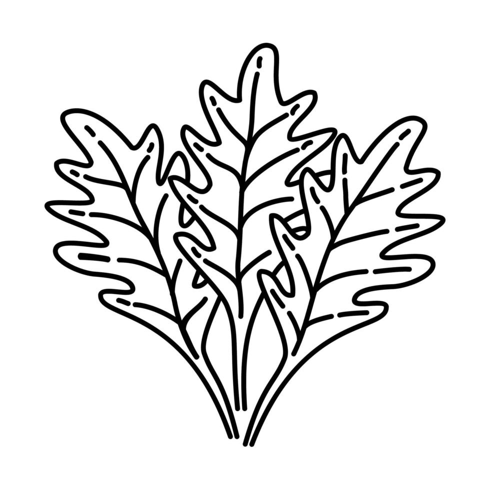 Arugula Icon. Doodle Hand Drawn or Outline Icon Style vector