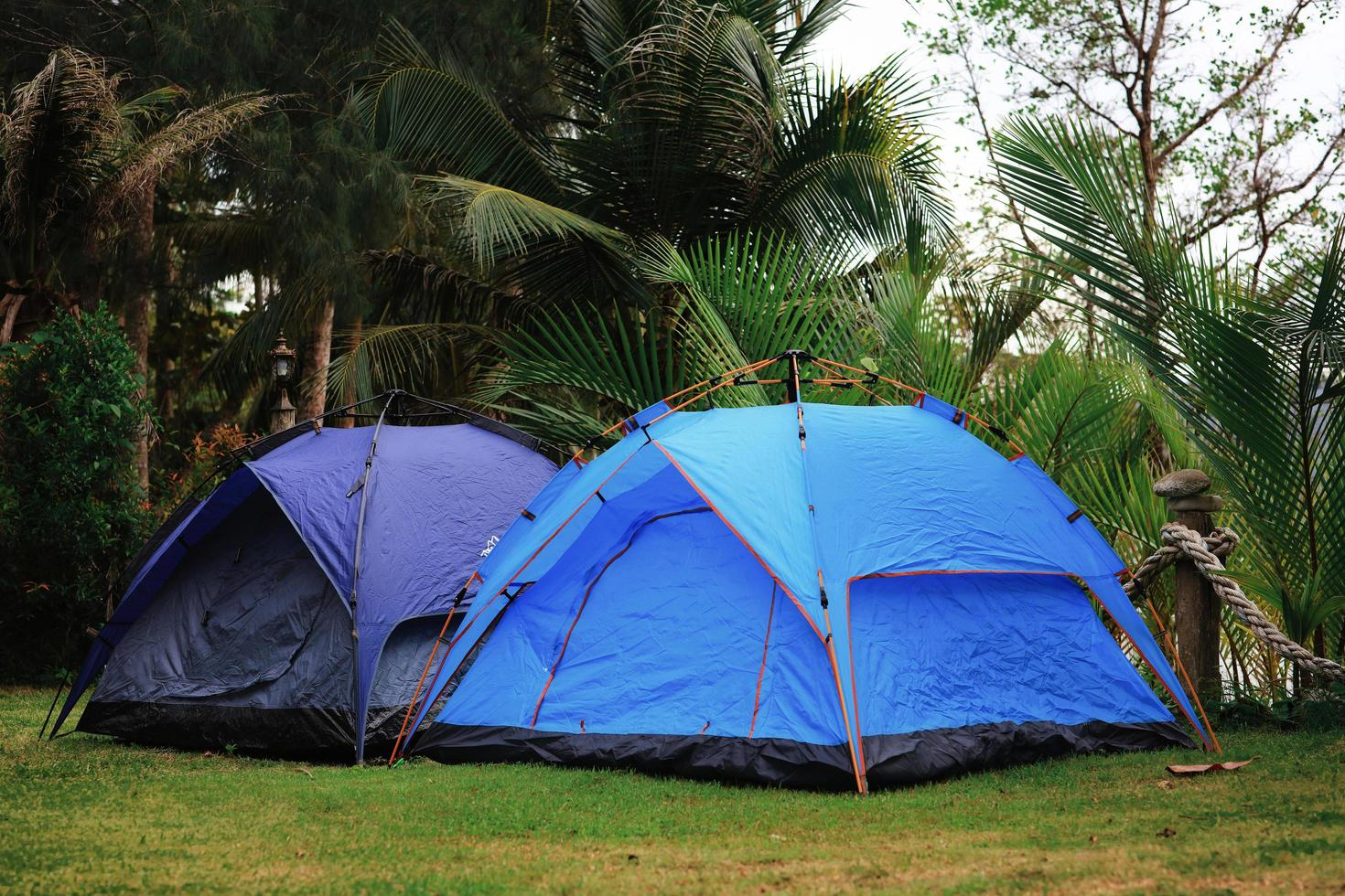 Cerca de tiendas de campaña acampando en un patio verde foto