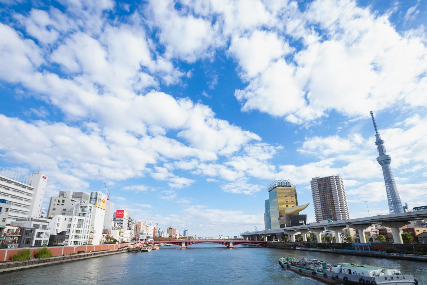 tokio sky tree y edificios de tokio foto