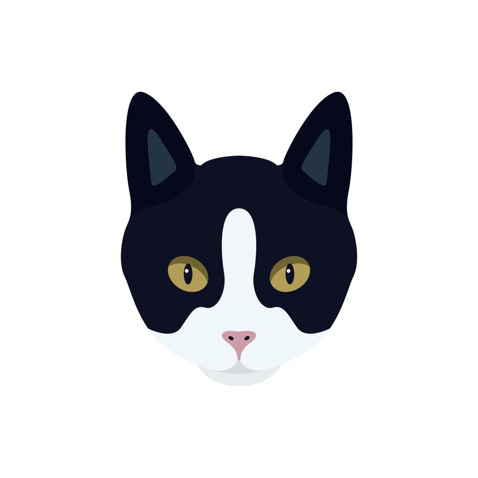 Portrait of a black and white cat with a pink nose. vector