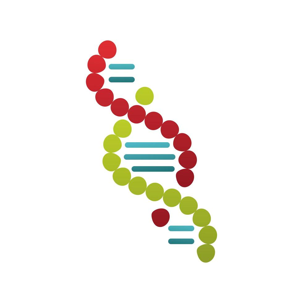 dna molecule structure isolated icon vector