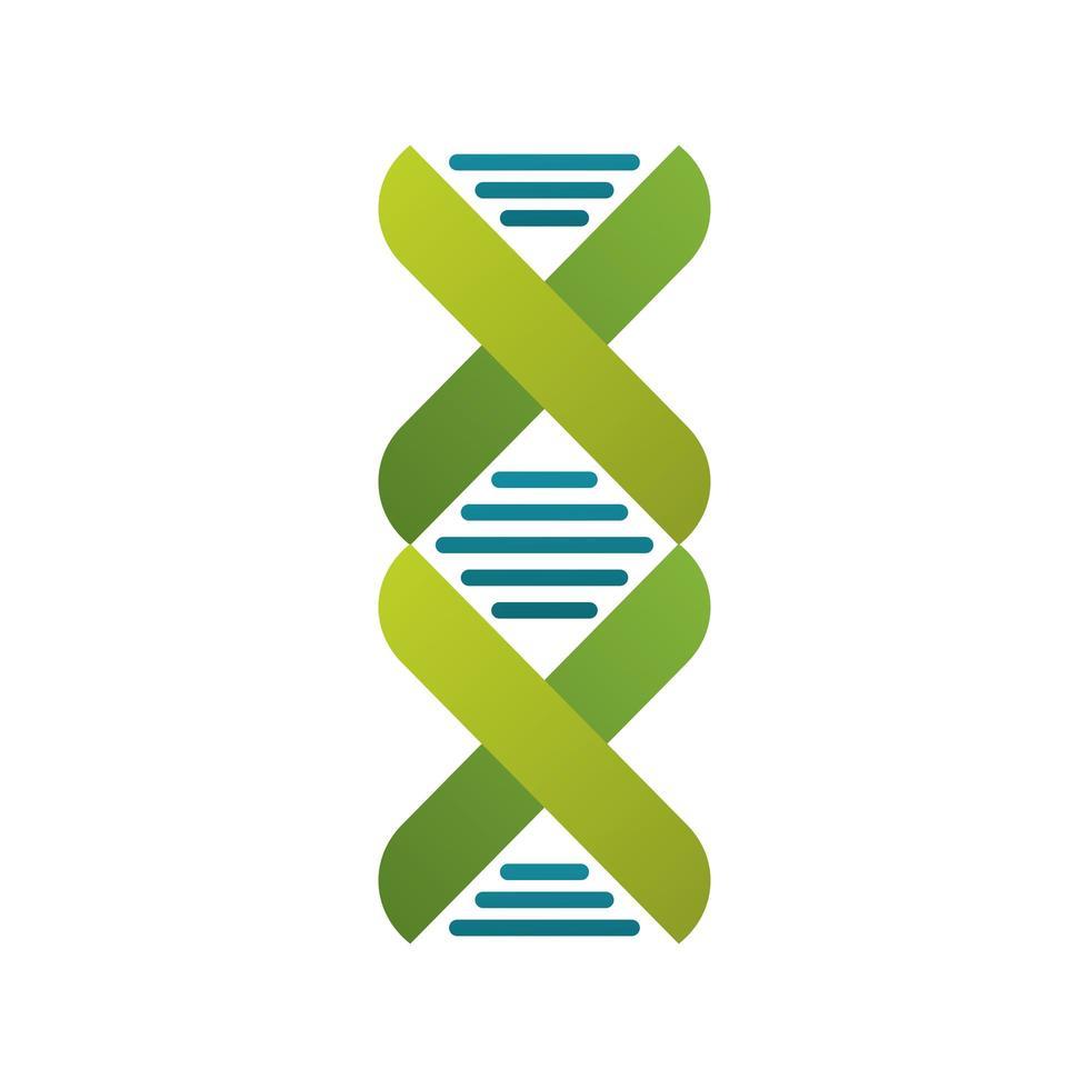 Icono aislado de la estructura de la molécula de ADN vector