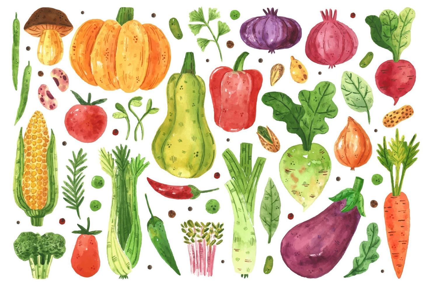 Vegetables watercolor design set vector