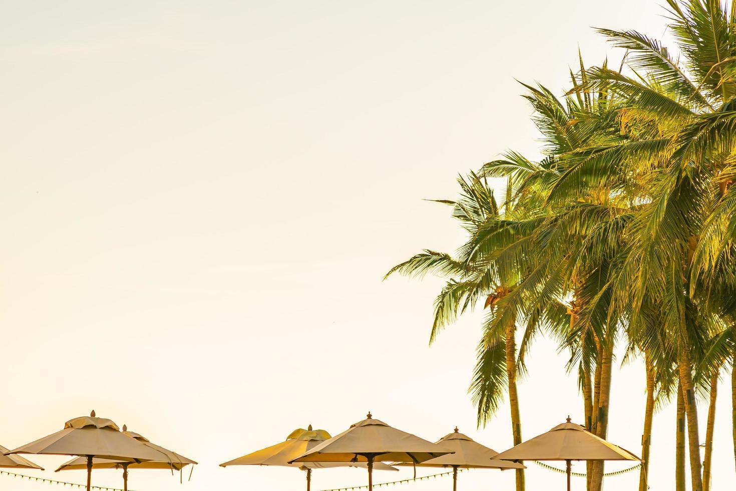 Beautiful tropical nature and umbrellas photo