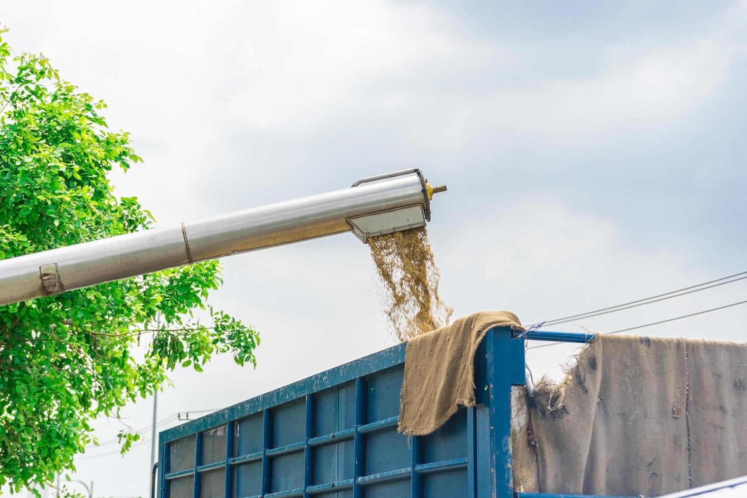 Cosechadora en acción en campo de trigo foto