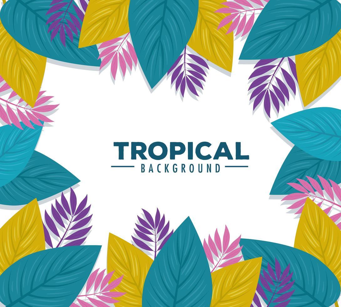 Fondo de follaje tropical con hojas de colores vector