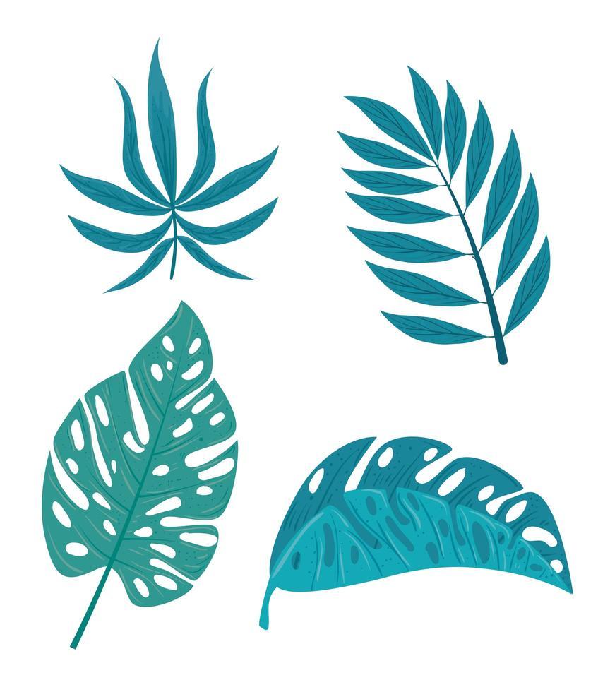 Establecer ramas tropicales con plantas de la selva. vector