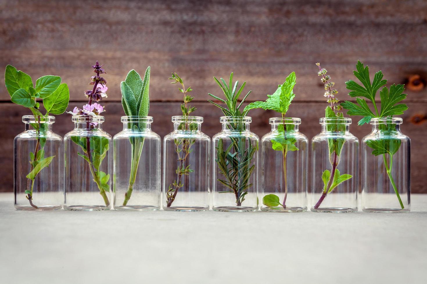hierbas en botellas de vidrio foto