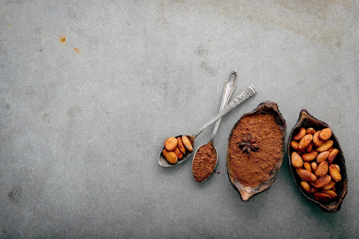 Cocoa powder and cacao beans on concrete photo