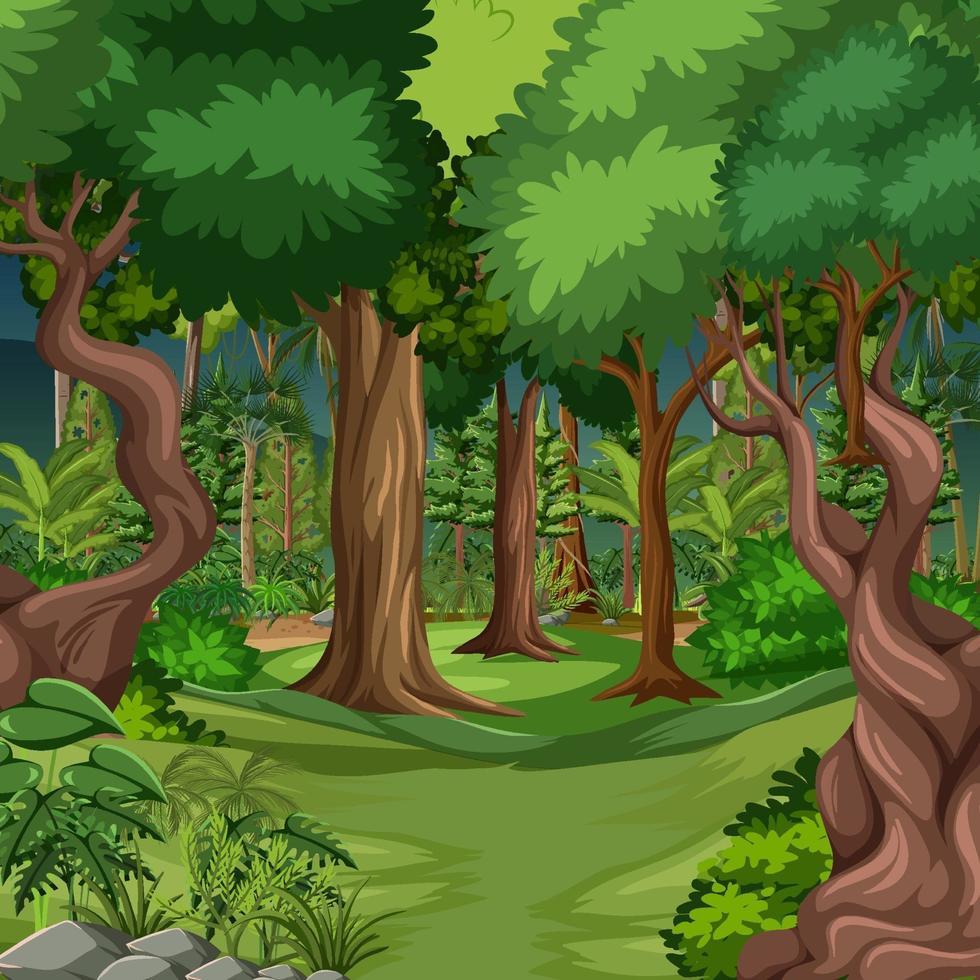 escena del bosque con muchos arboles. vector