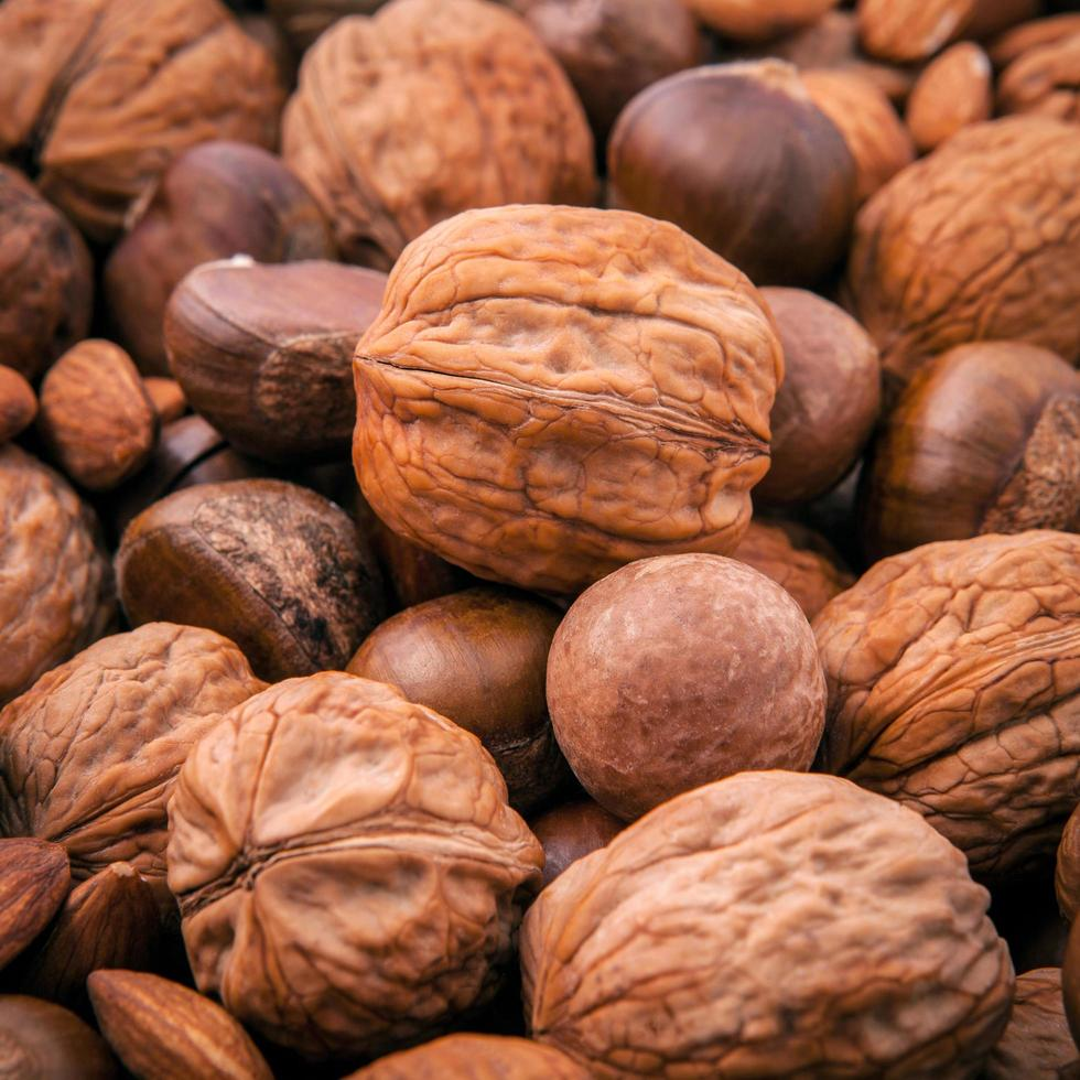 Different kinds of nuts photo
