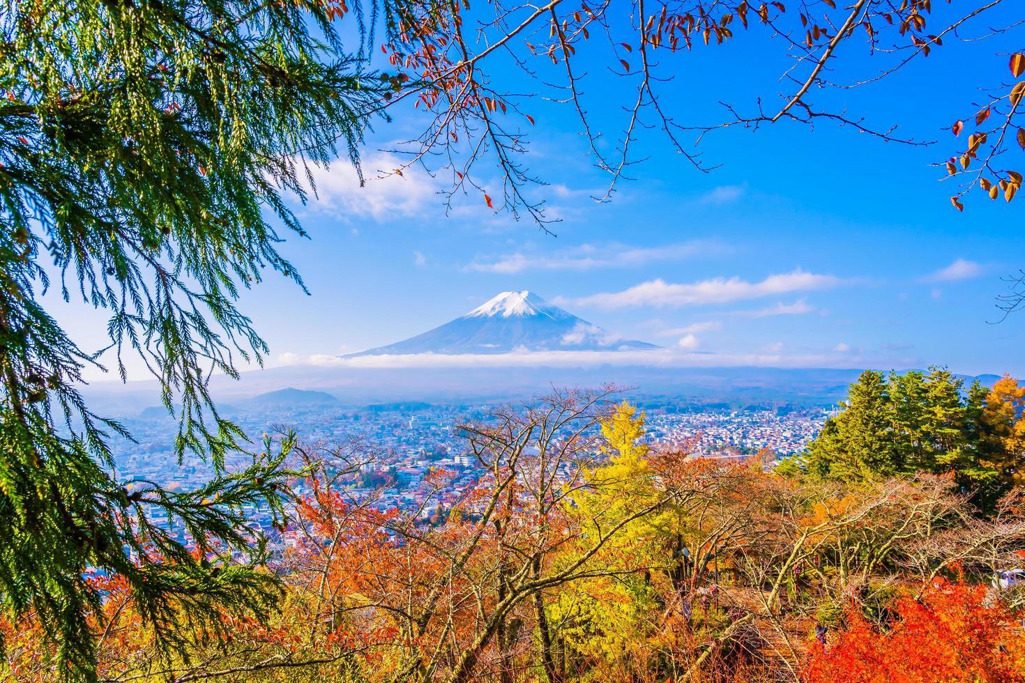 Mt. Fuji in Japan in autumn photo