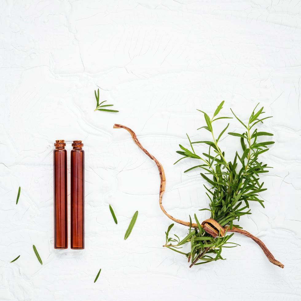 rama fresca de romero con aceites esenciales foto