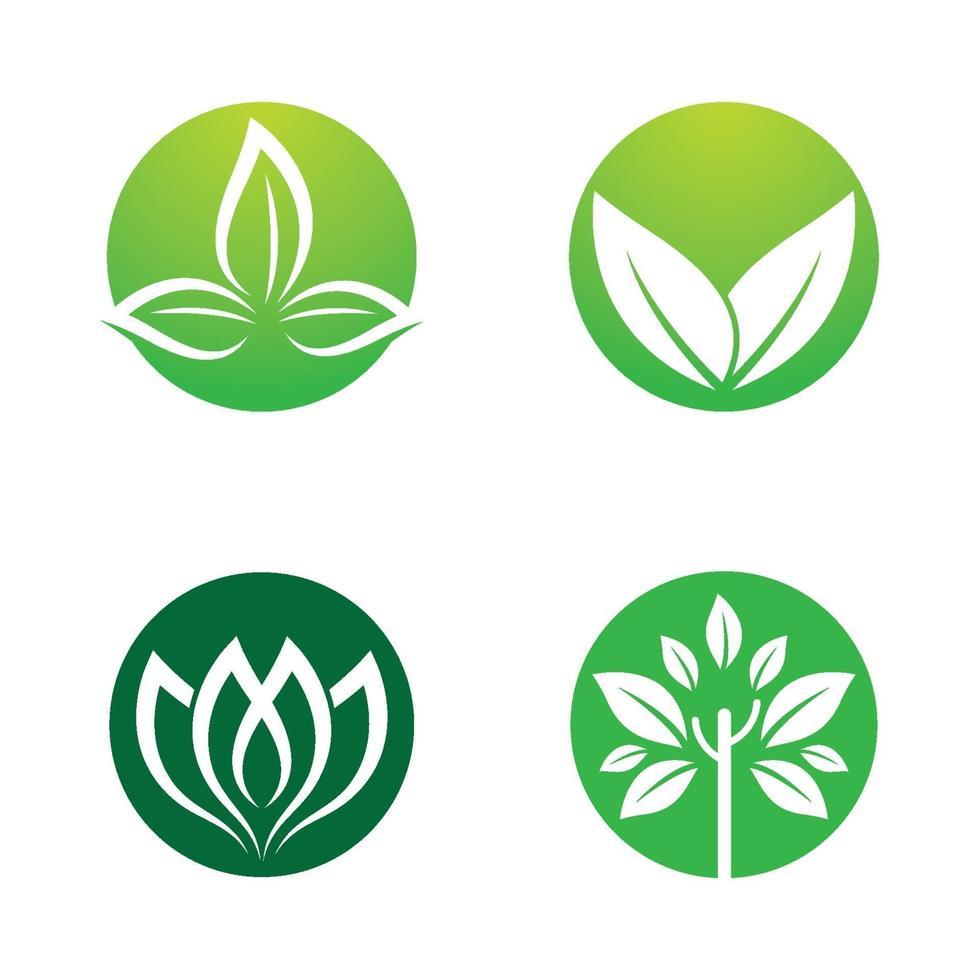 imagenes de logo de hoja vector