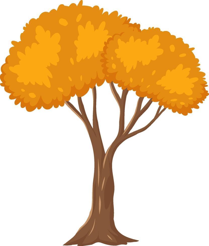 Árbol de otoño aislado sobre fondo blanco. vector