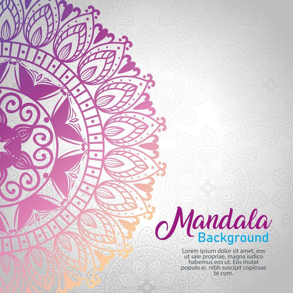 Floral mandala background vector