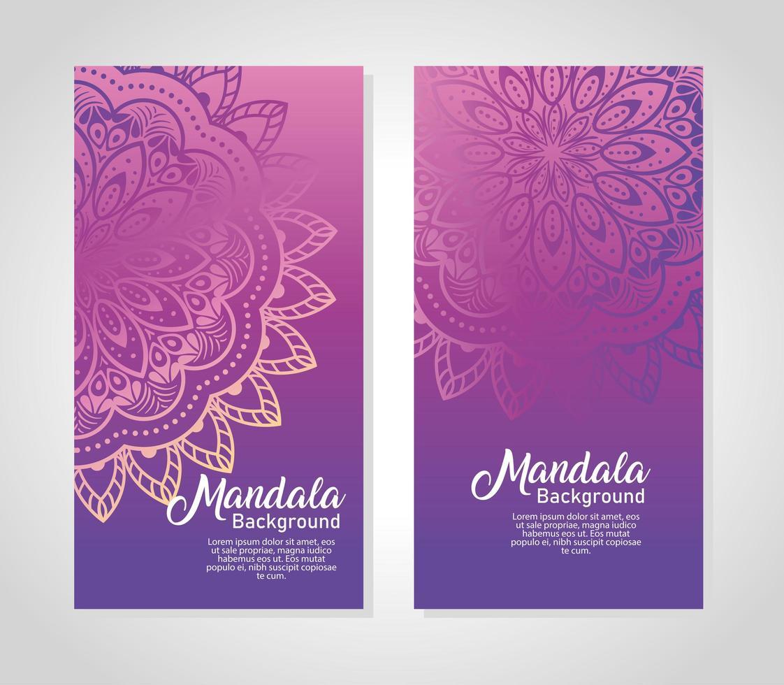 Floral mandala background set vector