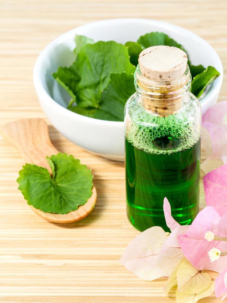 aceite de centella asiática y hojas foto