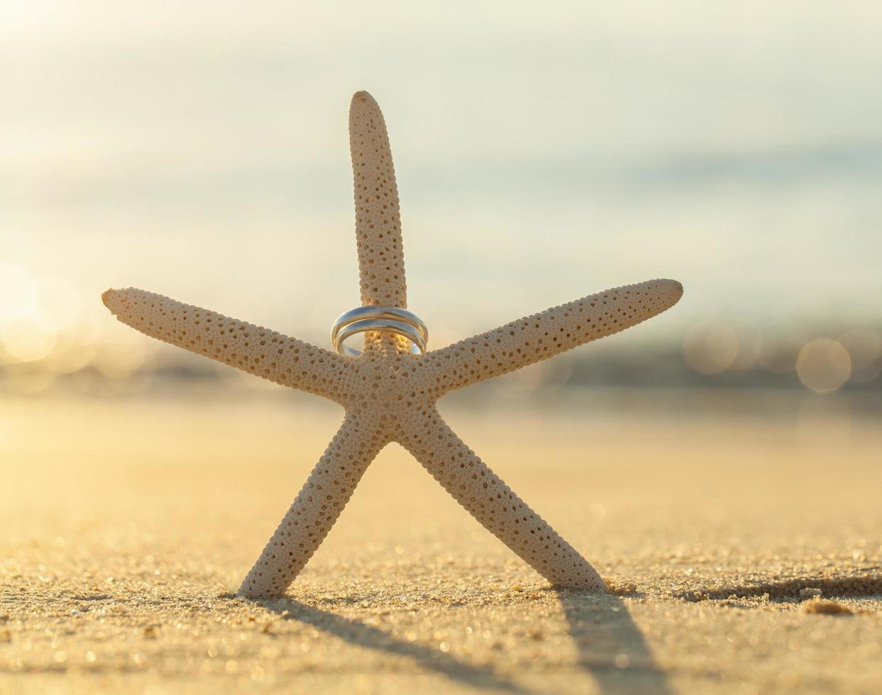 Wedding rings on a starfish photo