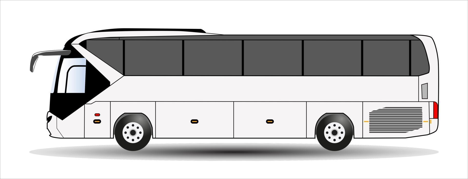 Bus isolated on white background. Vector. vector