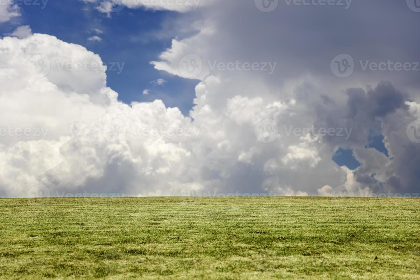 Ver en la hierba verde y el cielo azul nublado foto