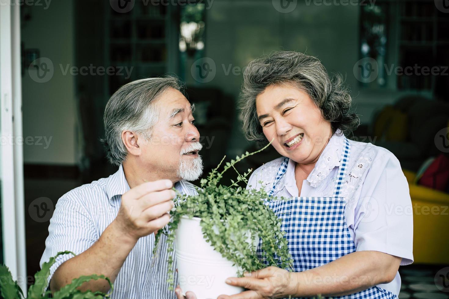 pareja de ancianos hablando juntos y plantando árboles en macetas foto