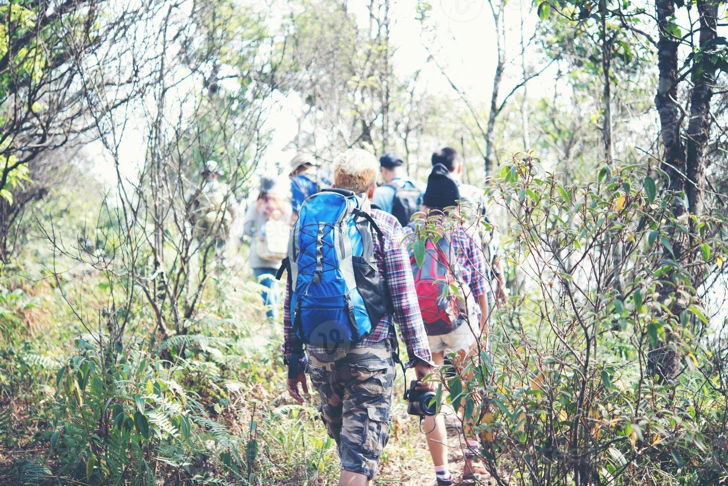 Close-up de amigos caminando con mochilas en el bosque desde atrás foto