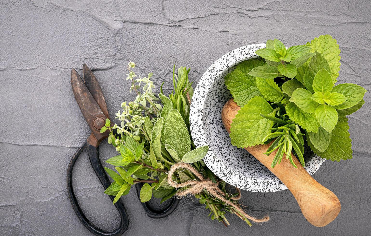 Herbs in a mortar on a gray background photo