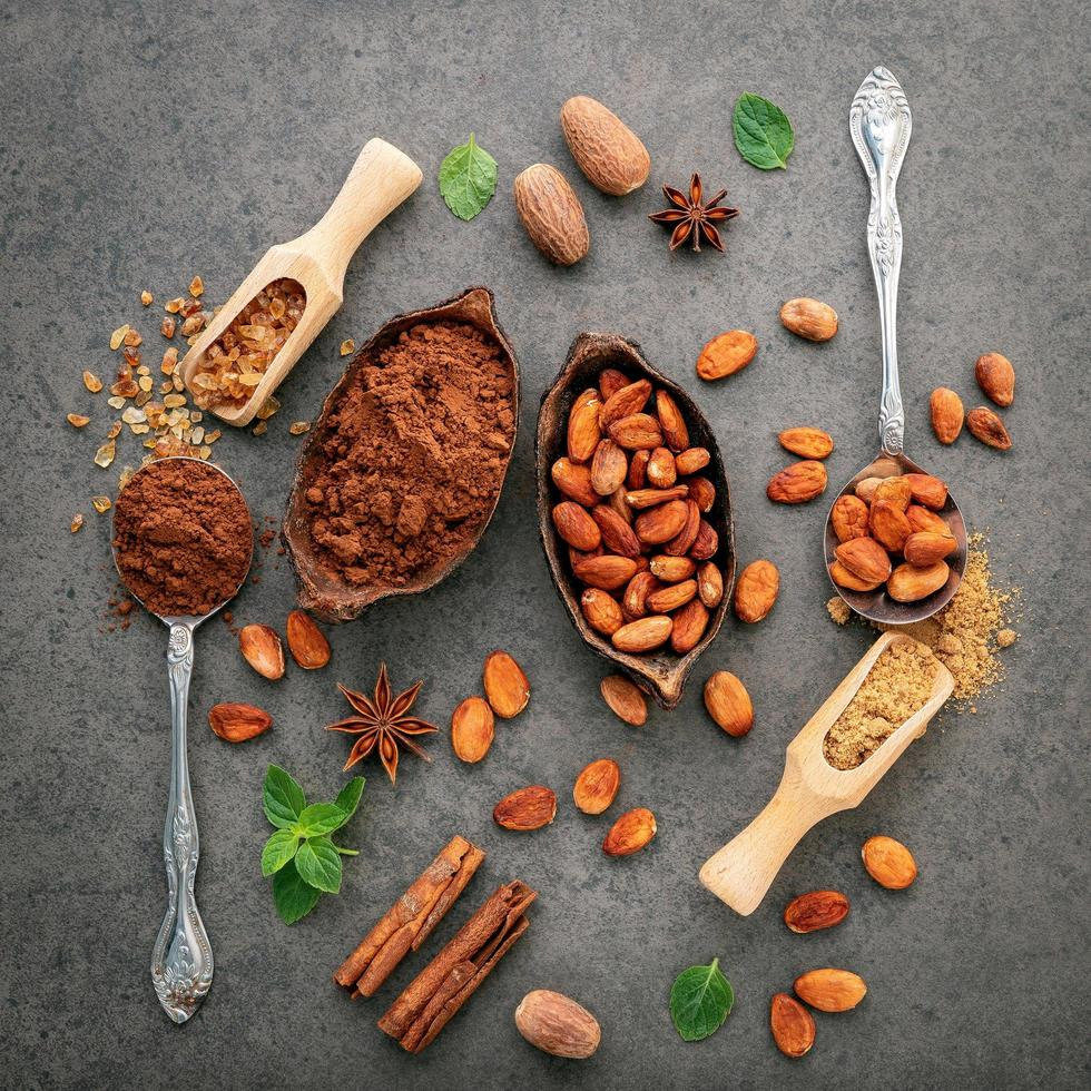 Cacao beans and cocoa powder in dishes photo