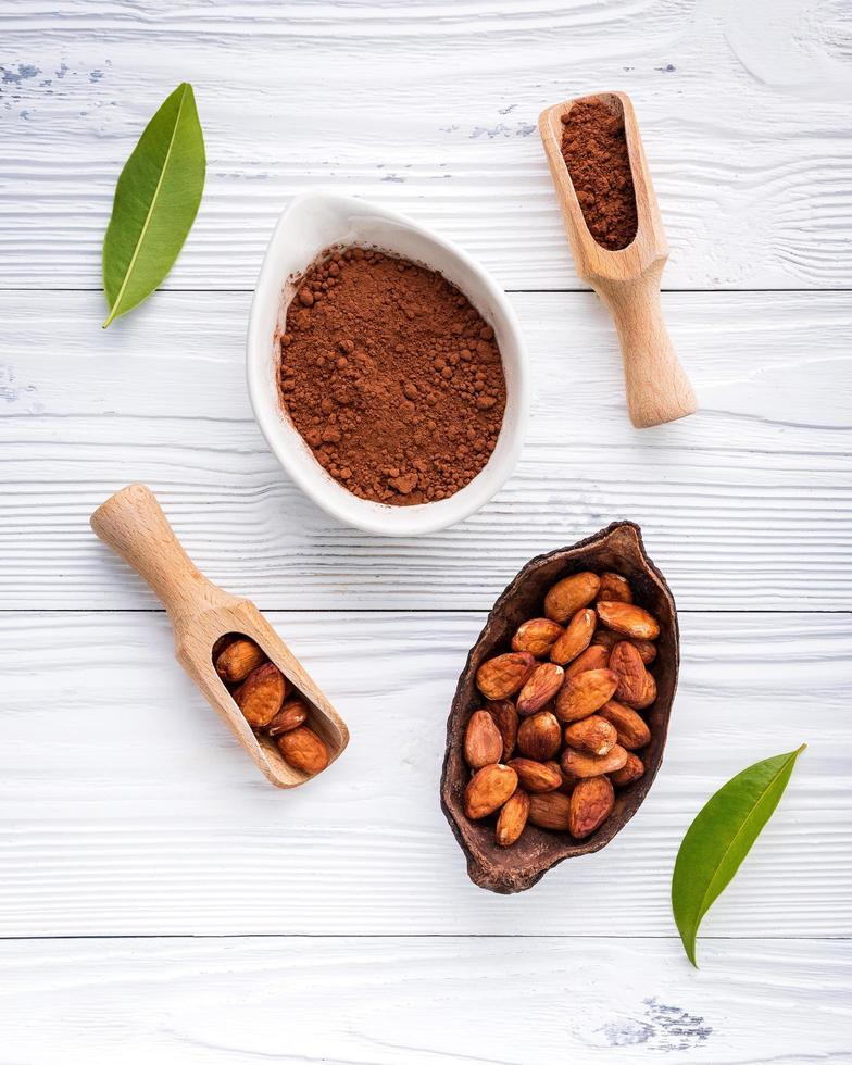 Cocoa powder and cacao beans in dishes photo