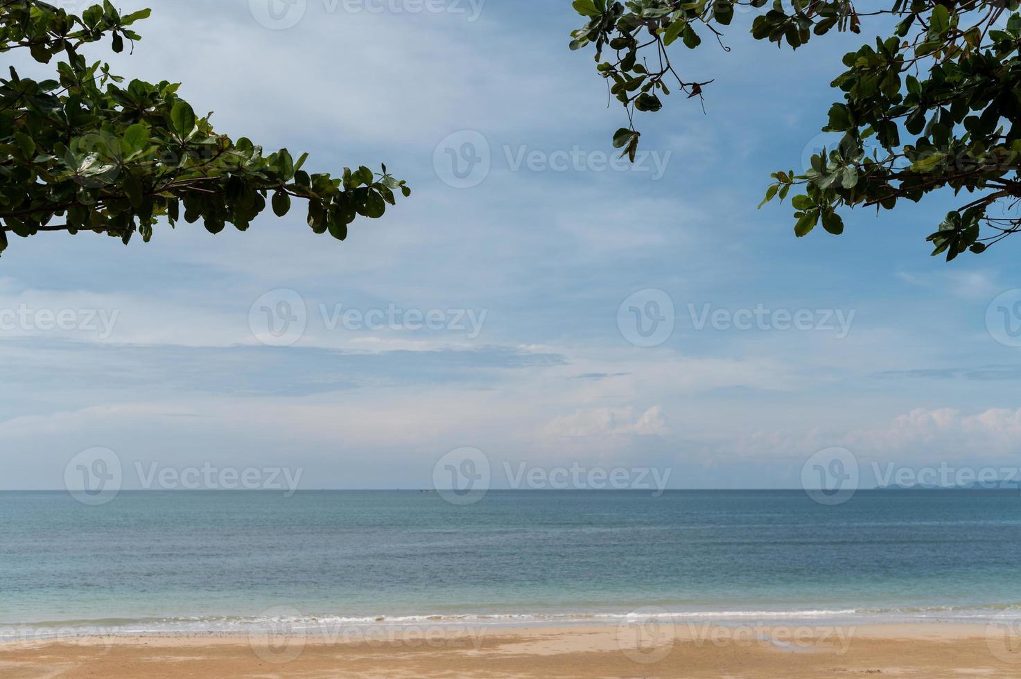 vista a la playa con arboles foto